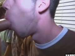 Amateur straight guys give wonderful group blowjobs