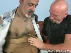 Two Bald Mature Daddies Fucking Each Other Bareback