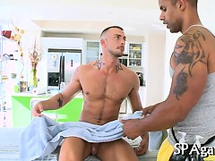 Raucous massage for twink